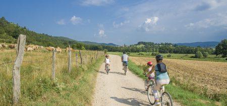 Itinéraire VTT – La Tour En Famille