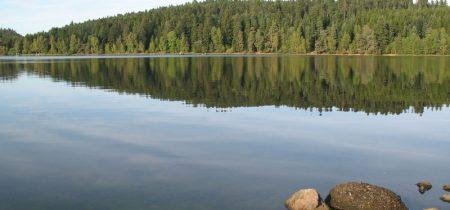 Peche A la Mouche Au Lac de Malaguet