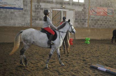 Les Poneys du Farnier – Equitation