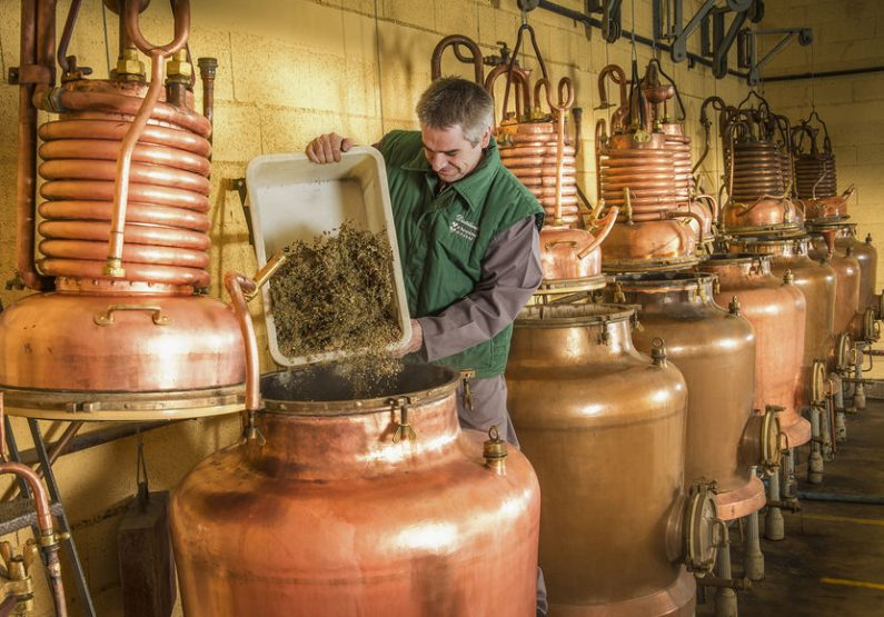 SEJ_Haute-Loire insolite – Distillerie de la Verveine du Velay Pagès à Blavozy