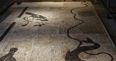 Musee gallo romain Michel Pomarat