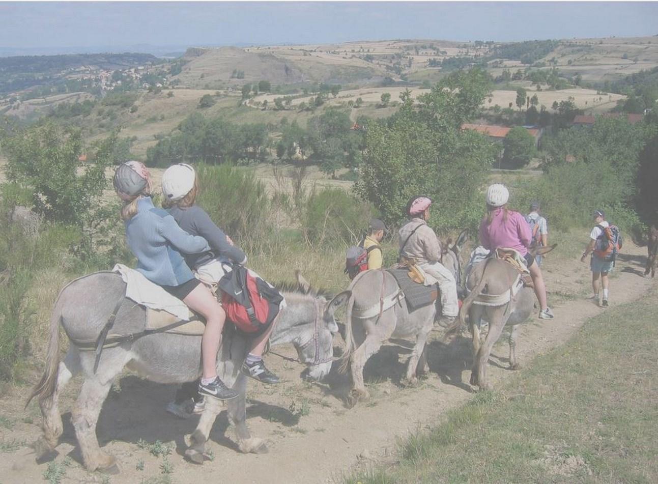 Balade en âne – Rando âne