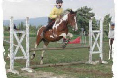 Concours de Hunter à Sembadel