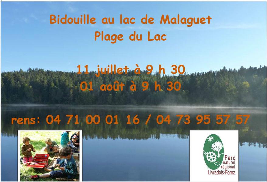 Bidouille au lac de Malaguet