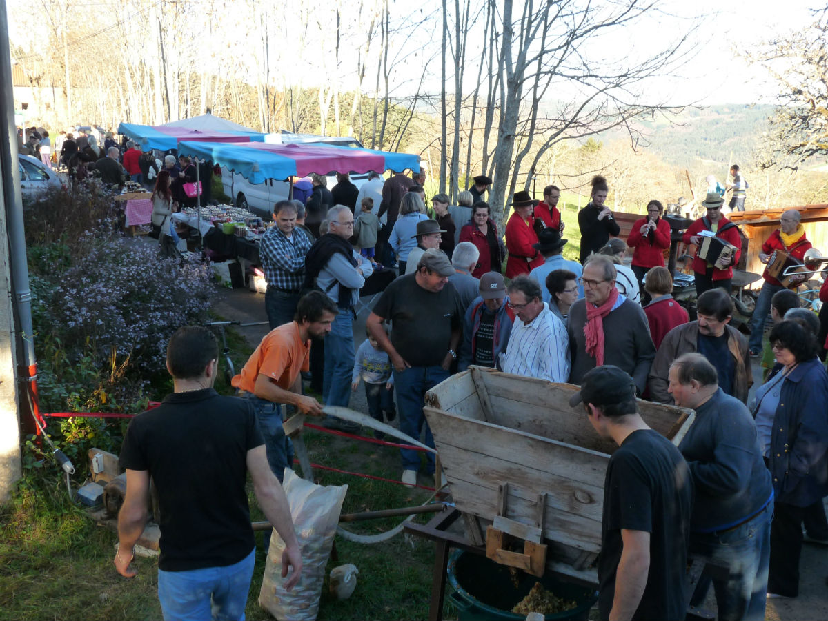 Fête du cidre et de la châtaigne à Malvières