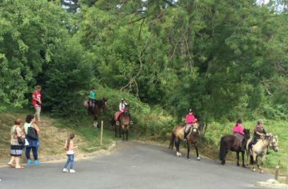 Cours d'équitation – La Cavalerie du Lac