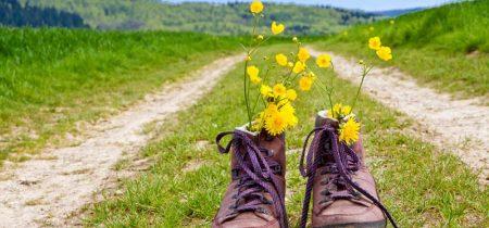 Groupes : séjour randonnée à La Chaise-Dieu