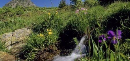Groupe : Journée du Puy-en-Velay aux Sources de La Loire