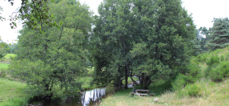 Aire de pique-nique du Pont Rosier