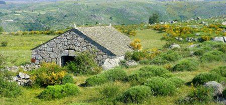 Le Chemin de Stevenson  : Du Puy-en-Velay à Saint Jean du Gard à pied