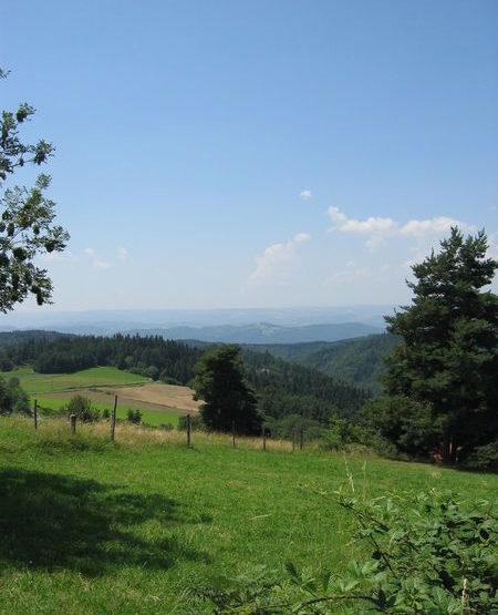 vue paysage bis