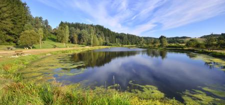 PR 137 – Le plateau de Beaune sur Arzon