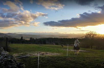 Ecurie de la Bruyere – Equitation