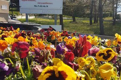 GAEC de 1001 fleurs