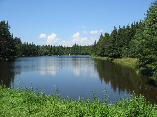 étang du Breuil