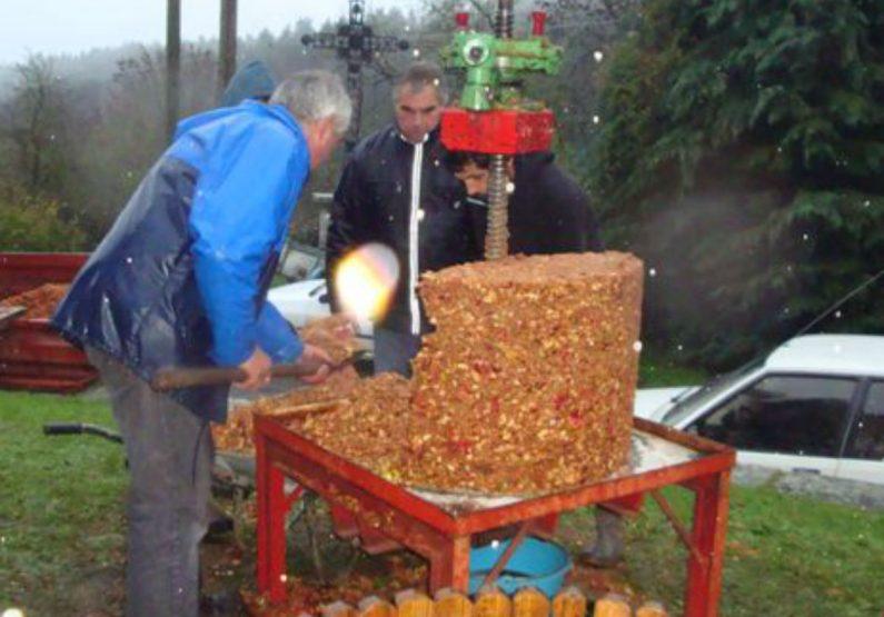 EVE_Fête du cidre_pressoir fruit