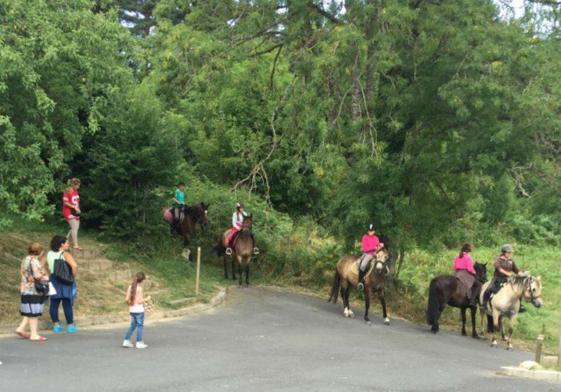 ACT_Cours d'équitation_la Cavalerie du Lac