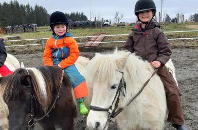 Cours d'équitation «La Cavalerie du Lac»